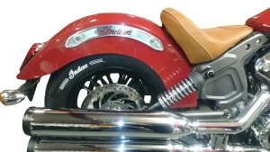 Indian Scout Rear Fender Accents