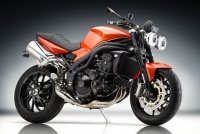 Triumph Speed Triple 1050 08-11 Rizoma Parts